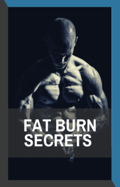 book cover of fat burn secrets