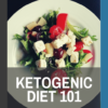 book cover of ketogenic diet 101