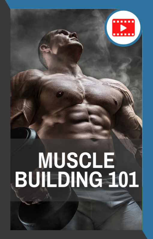 book cover of muscle building 101